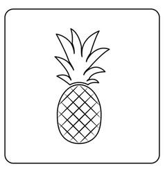 pineapple fruit vector image vector image