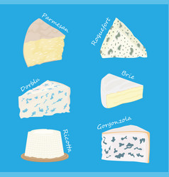 Collection of cheeses parmesan brie roquefort vector