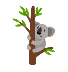 Grey koala on tree vector