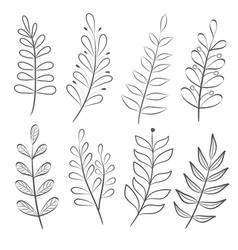 hand drawn set of tree branches collection of vector image