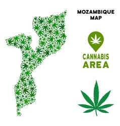 Marijuana composition mozambique map vector