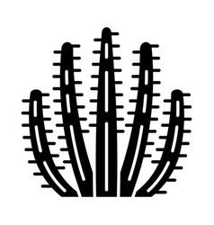 organ pipe cactus glyph icon vector image