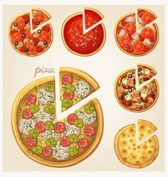 pizza top view set vector image