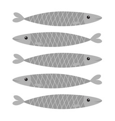sardine gray fish icon set iwashi sardina vector image