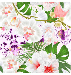 Seamless texture branch orchids vector