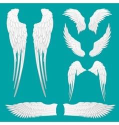 Heraldic Wings Set for Tattoo or Mascot Design vector image
