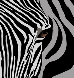 african animal vector image vector image