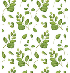seamless greenery patten background floral vector image