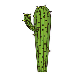 White background with cactus with small branch and vector