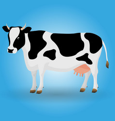 cow animal color black white vector image