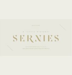 elegant alphabet letters font and number classic vector image