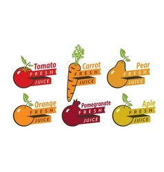 Fruits with fresh juice vector