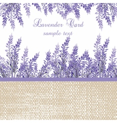 Lavender Card with provence style border vector