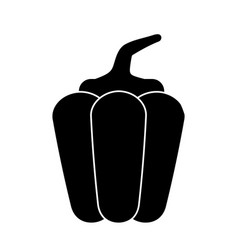pepper vegetable healthy pictogram vector image