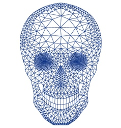 skull with geometric pattern vector image vector image