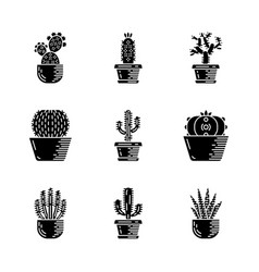 Cactuses in pots glyph icons set vector