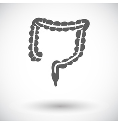Intestines icon vector image