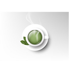 isolated cup of coffee collection green tea vector image