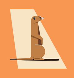 Meerkat bask in the sun vector