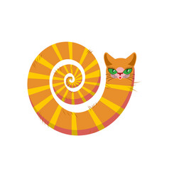 cat fabulous isolated long tail of pet on white vector image vector image