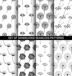 Set of Dandelions seamless patterns vector image