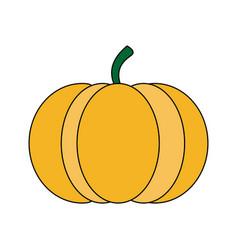 colorful silhouette orange pumpkin fruit food vector image