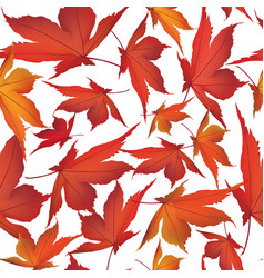 autumn leaves background floral seamless pattern vector image