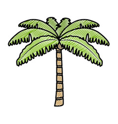 Doodle tropical palm nature tree style vector