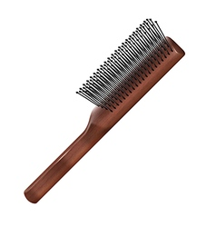 Hairbrush vector image