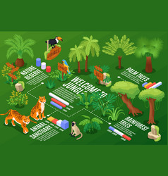 isometric jungle flowchart composition vector image