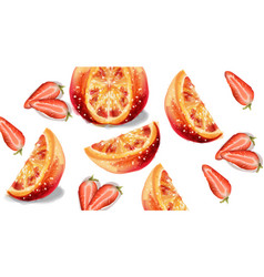 Orange and strawberry slices fruits watercolor vector