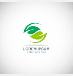 Circle green leaf organic logo vector