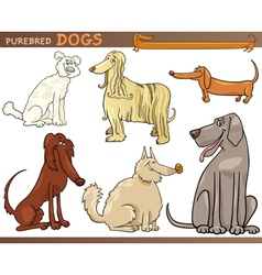 purebred dogs cartoon set vector image vector image