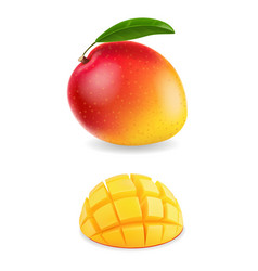fresh mango fruit with slices realistic isolated vector image