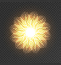 abstract fractal flower vector image