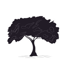 big tree drawing silhouette vector image