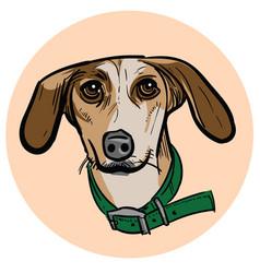Cartoon dog head vector