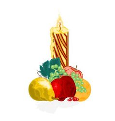 Christmas candle with fruit vector image
