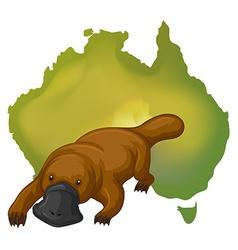 Platypus and Australia map vector