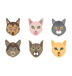 Set cute cats funny doodle animals kittens in vector