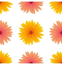 Spring Pink Yellow Flowers Isolated vector image