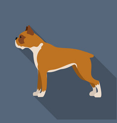 Boxer dog icon in flat style for web vector
