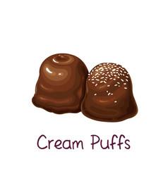 Chocolates and mini cream puffs profiterole vector