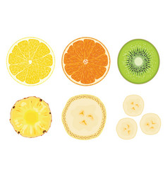 collection fruit cuts vector image