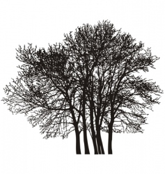 group tree vector image vector image
