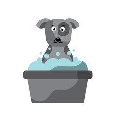 cartoon dog grooming foam clean vector image