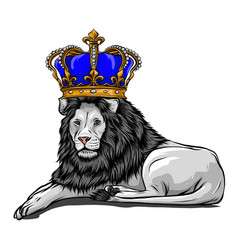 color king lion on white vector image