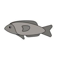 Colorful silhouette fish aquatic animal vector