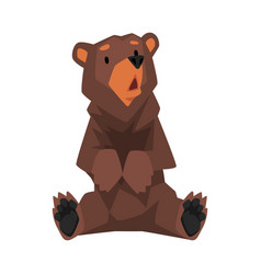 Cute sitting brown grizzly bear wild animal vector