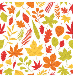 Elegant seamless pattern with fallen autumn leaves vector